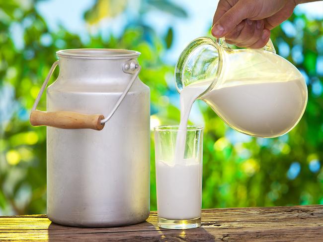 protein içeren yiyecek süt