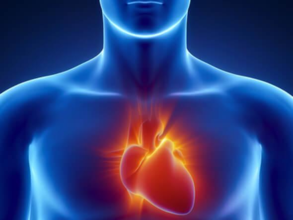 kalp hastaları protein tozu kullanabilir mi